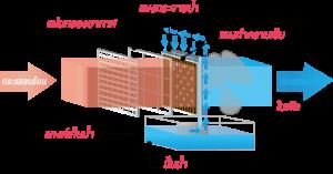 evaporative system